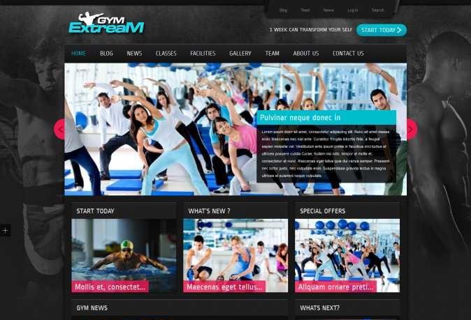 education WordPress Web design