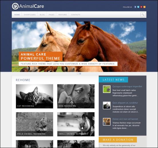 animal-care1